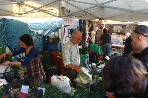 Auto-Autorizzazione per il Mercato in Bolognetti