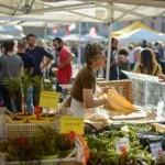 Difesa dei mercati contadini – Udienza Conoscitiva in Comune